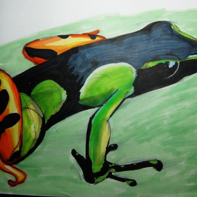 green_orange_frog